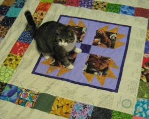 Community Quilt For Predictor